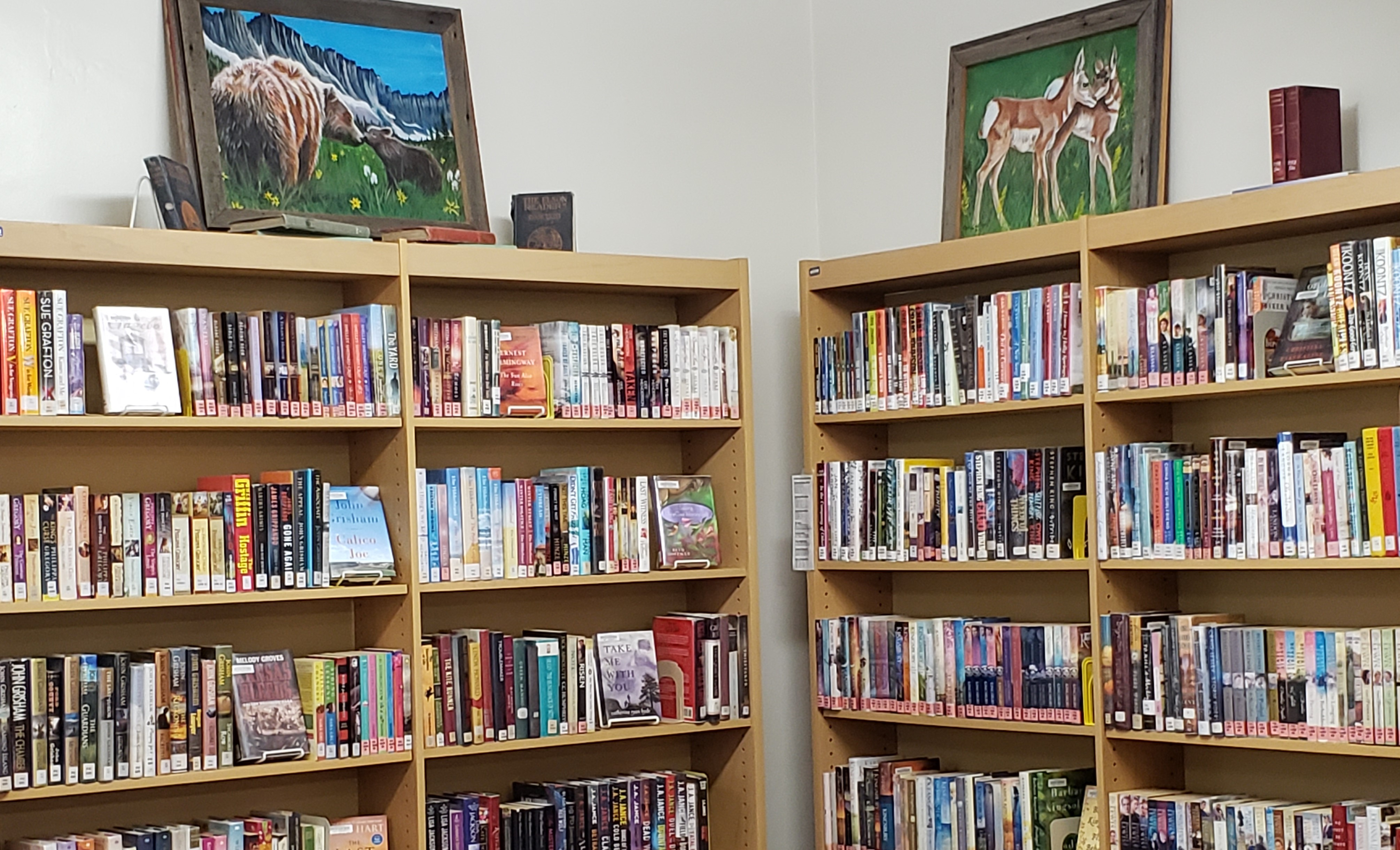 Some of our fiction titles with local art.
