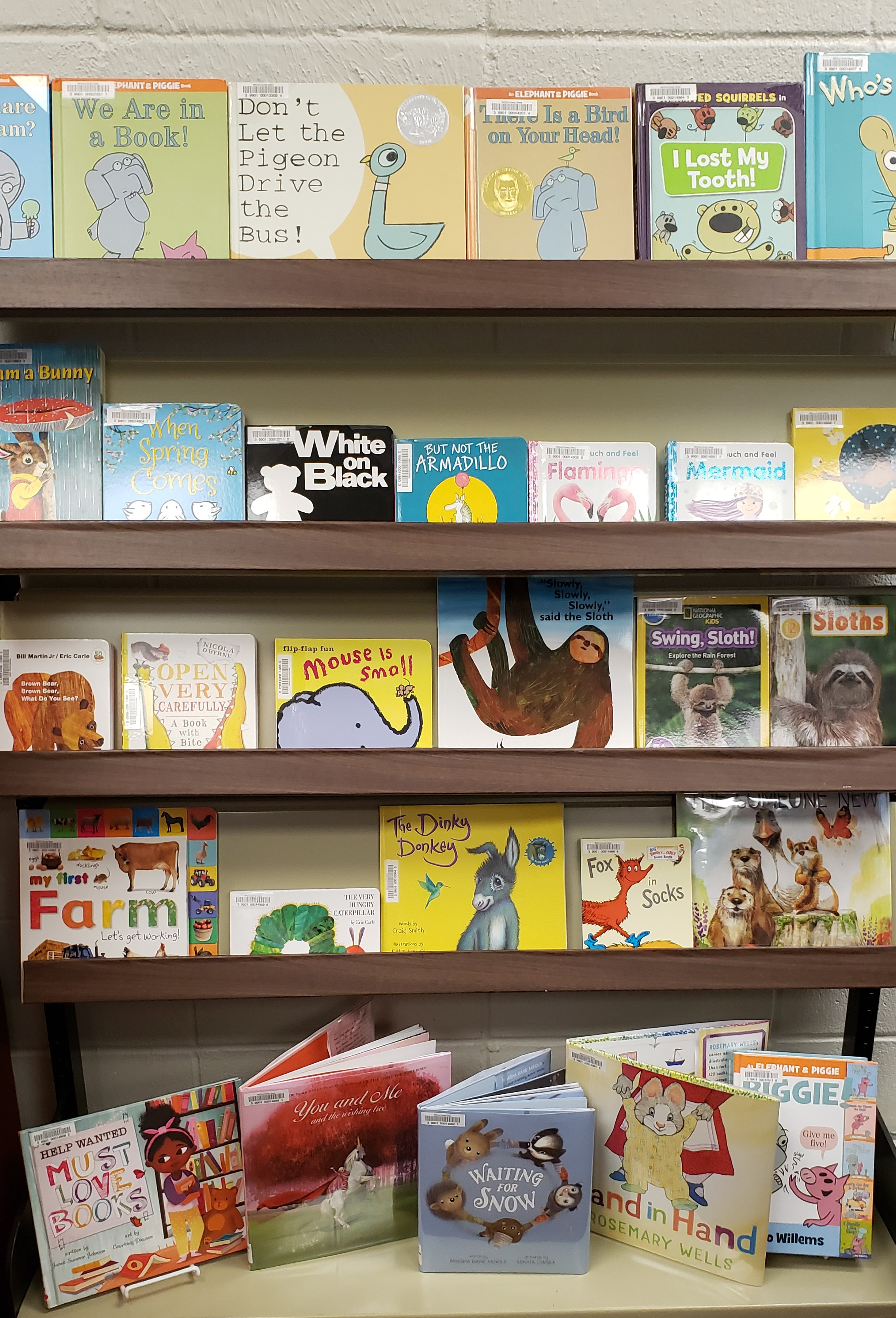 Reading is so important to growing brains.  We keep a growing selection of books for the little ones with new books arriving every month.
